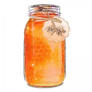 Jar of Honey illustration