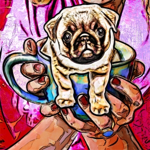 Pug Dog illustration