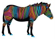 zebra-stock.cdr