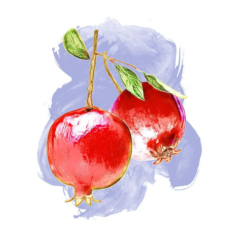 11. Food Illustration: Pomegranate