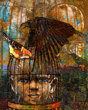 Boy in Bird Cage illustration