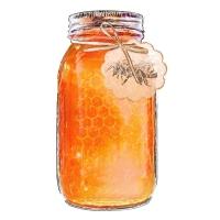 16. Food Illustration: Honey